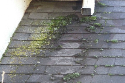Enviro Roof Restore Cleaning And More Nwa Northwest
